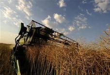 La Unión Europea abrió una investigación por acusaciones de que Argentina e Indonesia venden biodiésel a precios de dumping en el Viejo Continente y están dañando a las compañías locales, que deben reducir su producción o enfrentarse a la bancarrota. En la imagen, una cosechadora recoge cultivo para biocombustible en una granja colectiva de Pelagonija, cerca de Bitola, a 170 km al sur de Skopje, Macedonia, en una foto de archivo del 10 de julio de 2011. REUTERS/Ognen Teofilovski