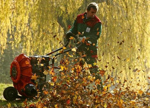 A gardener cleans a park with a leaf blower on an autumn day in Vienna November 14, 2012. REUTERS/Heinz-Peter Bader