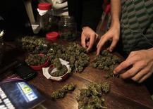<p>Imagen de archivo de unos restos de marihuana seca en Montevideo, ago 9 2012. Los uruguayos podrán cultivar marihuana en su casa y consumir hasta 40 gramos por mes, aunque el Estado tendrá amplio control de la producción, distribución y el uso de la droga, según un proyecto de ley del Gobierno y sus partidarios que comenzará a ser discutido el miércoles en el Congreso. REUTERS/Andres Stapff</p>