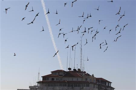 Birds fly as a trail of smoke is seen after the launch of a rocket from Gaza strip towards Israel November 15, 2012. REUTERS/Ahmed Zakot