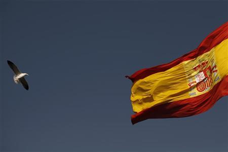 A seagull flies past the Spanish flag in front of the congress hall, venue of the Ibero-American Summit, in Cadiz, southern Spain November 15, 2012. REUTERS/Jon Nazca