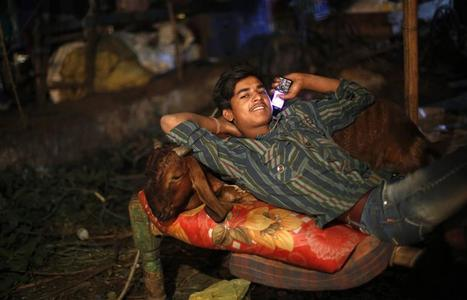 A trader rests on a cot with a goat while waiting for customers at a livestock market on the eve of Eid al-Adha in the old quarters of Delhi October 26, 2012. REUTERS/Mansi Thapliyal