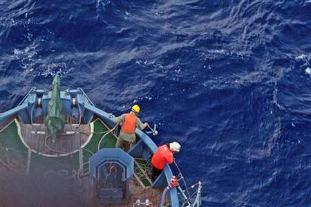 A crew member holds a grappling hook on the bow of a Japanese whaling ship about 480 km (298 miles), north of Mawson Peninsula off the coast of Antarctica, in this handout picture released on January 18, 2012. REUTERS/Sea Shepherd/Handout