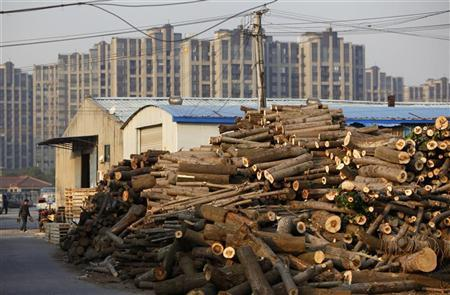 A man walks near a timber storage area in Shanghai December 12, 2011. REUTERS/Aly Song