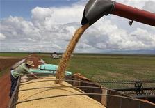 Grãos de soja são descarregados em caminhão em fazenda em Cuiabá. O índice de preços ao produtor desacelerou a alta em outubro para 0,21 por cento, após avanço de 0,69 por cento em setembro, influenciado principalmente pela queda dos preços dos alimentos, informou o Instituto Brasileiro de Geografia e Estatística (IBGE), nesta quinta-feira. 27/03/2012 REUTERS/Paulo Whitaker
