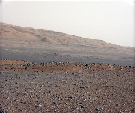 This NASA handout image is from a series of test images to calibrate the 34-millimeter Mast Camera on NASA's Curiosity rover taken August 23, 2012. REUTERS/NASA/Handout/Files