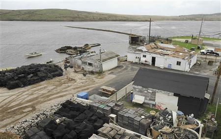 Shacks and storage areas cover the Drakes Bay Oyster Company's land in Inverness, California, November 29, 2012. The U.S. government sided with environmental groups on Thursday with its decision to shut down a Northern California oyster farm in an attempt to restore wilderness. Secretary of Interior Ken Salazar said he would not renew the lease for the weatherbeaten shacks, oyster shell mounds and waterlogged docks that make up Drakes Bay Oyster Company. REUTERS/Noah Berger