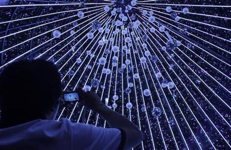 A man takes a picture of decorations inside a giant Christmas tree in front of the ION shopping center on Orchard Road in Singapore December 20, 2009. REUTERS/May Naji/Files