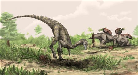 Artist rendering shows Nyasasaurus parringtoni, either the earliest dinosaur or the closest dinosaur relative yet discovered in this image released to Reuters on December 4, 2012. Nyasasaurus parringtoni was up to 10 feet long, weighed perhaps 135 pounds and is depicted near plant-eating reptiles of the genus Stenaulorhynchus. REUTERS/©Natural History Museum, London/Mark Witton/Handout