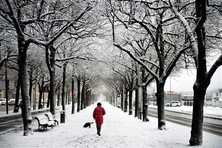 File photo of a woman walking her dog on a snow covered street in central Stockholm November 29, 2012. REUTERS/Jessica Gow/Scanpix