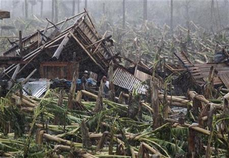 Typhoon victims stand outside their destroyed house and toppled banana trees swept at the height of Typhoon Bopha, in New Bataan town in Compostela Valley, southern Philippines December 7, 2012. REUTERS/Erik De Castro