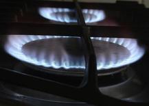 <p>La ministre de l'Ecologie et de l'Energie, Delphine Batho, a annoncé sur France Inter que le tarif du gaz augmenterait de 2,4% au 1er janvier prochain. /Photo d'archives/REUTERS/Nigel Roddis</p>
