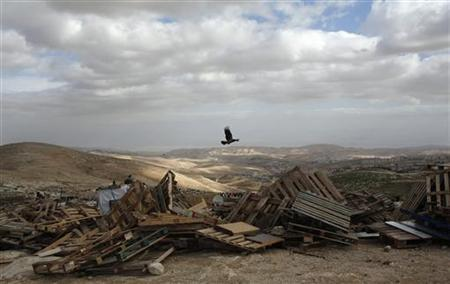 A bird flies over pieces of wood in an area near Jerusalem known as E1, where there are plans for construction of some 3,000 settler homes December 6, 2012. REUTERS/Baz Ratner