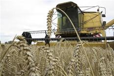 <p>Le revenu moyen des agriculteurs français a progressé en 2012 pour la troisième année consécutive, atteignant un pic historique pour les grandes cultures. A 36.500 euros par actif et avant impôt, le revenu moyen agricole progresse de 4% par rapport à l'an dernier. /Photo prise le 16 août 2012/REUTERS/Pascal Rossignol</p>