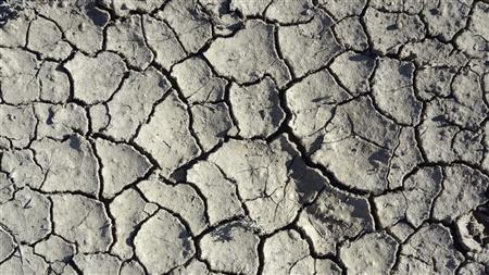 Cracks appear on the soil of a drought-hit field in Tropic, Utah August 19, 2012. REUTERS/Charles Platiau