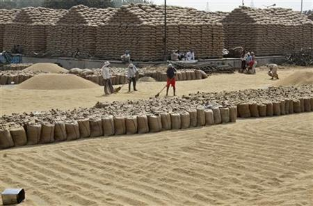 Labourers spread paddy crop for drying at a wholesale grain market in Chandigarh October 15, 2012. REUTERS/Ajay Verma/Files