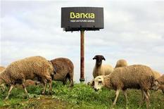 Las acciones de la nacionalizada Bankia caían más de un 14 por ciento en la mañana del jueves, después de desvelarse en la noche del miércoles una valoración negativa del banco por parte del FROB, que no descarta que sus accionistas se enfrenten a pérdidas totales. En la imagen de archivo, unas ovejas pastan junto a un cartel de Bnakia a las afueras dee Sevilla, el 4 de diciembre de 2012. REUTERS/Marcelo del Pozo