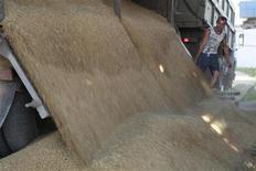 Imagen de archivo de un empleado descargando granos desde un tractor en Trunovskoye, Rusia, jul 11 2012. La decisión de Rusia de no prohibir las exportaciones de granos luego de otra reducida cosecha muestra que sus líderes reconocen que el embargo impuesto tras la fallida cosecha del 2010 fue un error. REUTERS/Eduard Korniyenko