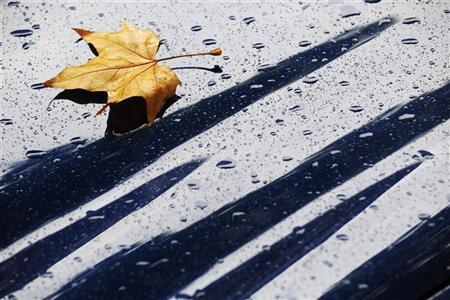 A fallen autumn leaf rests with raindrops on the bonnet of a Jaguar car in London October 1, 2012 REUTERS/Luke MacGregor