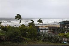 """Près de Saint-Gilles-les-Bains, à la Réunion. La préfecture de la Réunion a déclenché l'alerte cyclonique maximale """"rouge"""", à l'approche de la forte tempête tropicale Dumile. Jeudi matin, 25 000 foyers étaient privés d'électricité à la suite de chutes d'arbres ou de branches sur les lignes et les deux aéroports de la Réunion étaient fermés. /Photo prise le 3 janvier 2013/REUTERS/Laurent Capmas"""