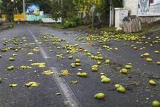 Des mangues sur la chaussée près de Saint-Gilles-les-Bains, à la Réunion. Le cyclone Dumile est passé au plus près des côtes de la Réunion jeudi après-midi, sans faire de victimes ni causer de dégâts majeurs aux infrastructures de l'île et la préfecture a décidé de lever l'alerte rouge interdisant aux habitants de sortir de leur domicile. /Photo prise le 3 janvier 2013/REUTERS/Laurent Capmas