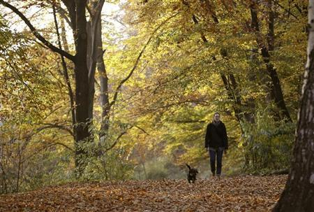 A woman and her dog walk along trees during a sunny autumn day in a park at Berlin's Wilmersdorf district November 7, 2011. REUTERS/Fabrizio Bensch