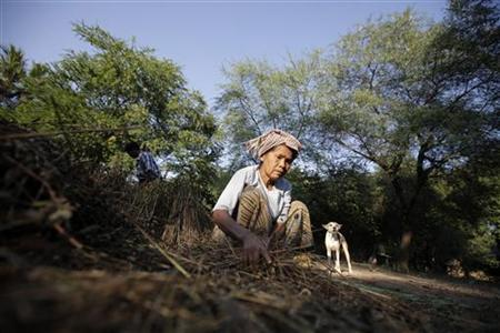 A woman is seen at a village near a copper mine in Sarlingyi township December 14, 2012. REUTERS/Soe Zeya Tun