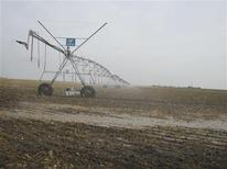 El año 2012 fue el más cálido que se ha registrado en Estados Unidos continental, superando el récord anterior por un grado Fahrenheit completo, dijo la agencia climática del Gobierno estadounidense. En la imagen, de 26 de noviembre, un aspersor en uso cerca de Dodge City, en Kansas. REUTERS/Kevin Murphy