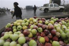 Los precios mundiales de los alimentos cayeron ligeramente en diciembre a su nivel más bajo desde junio, liderados por descensos en los precios de los cereales y los aceites, dijo el jueves la agencia de alimentos de Naciones Unidas. En la imagen, un cajón de manzanas cerca de la localidad de Majdal Shams, en los Altos del Golán, el 8 de enero de 2013. REUTERS/Ammar Awad
