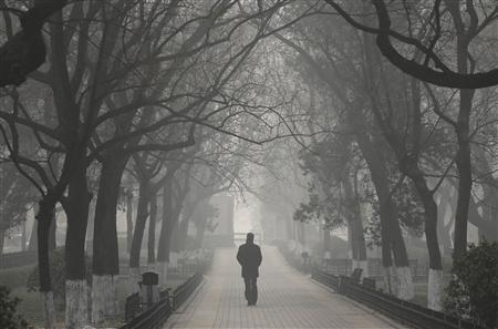 A man walks along trees on a heavy haze winter day in central Beijing, January 12, 2013. REUTERS/Jason Lee