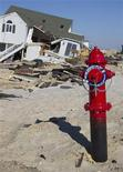 A new fire hydrant protrudes from the sand in a neighborhood that was heavily damaged by Hurricane Sandy, in Ortley Beach, New Jersey, January 7, 2013. Continuous efforts are underway to rebuild parts of the town destroyed in late October 2012 by the superstorm. REUTERS/Tom Mihalek (UNITED STATES - Tags: DISASTER ENVIRONMENT SOCIETY)