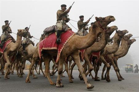 Border Security Force (BSF) soldiers ride their camels as they rehearse for the Republic Day parade amid dense fog on a cold winter morning in New Delhi January 14, 2013. REUTERS/B Mathur