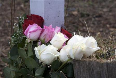 Roses are seen at the entrance to Sandy Hook Elementary School in Newtown, Connecticut January 14, 2013, on the one-month anniversary of the shooting that killed 20 children and six staff members. REUTERS/ Michelle McLoughlin (UNITED STATES - Tags: EDUCATION CRIME LAW)