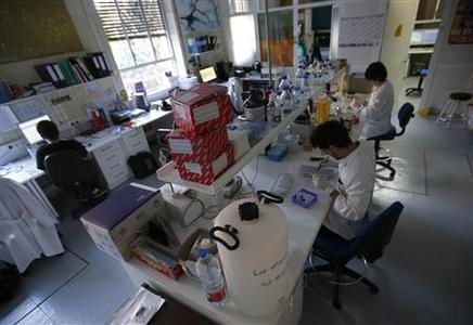 Scientists work in a laboratory at the Complutense Medicine University in Madrid December 4, 2012. REUTERS/Andrea Comas