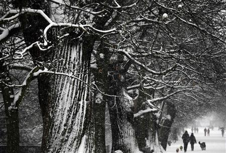 People walk through the snow covered Greenwich Park in London January 20, 2013. REUTERS/Reinhard Krause
