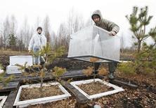 Científicos británicos que tratan de encontrar formas más eficientes de energía solar están investigando cómo imitar la forma en la que las plantas transforman la luz del sol en energía y producir hidrógeno como combustible para los vehículos. En la imagen de archivo, dos trabajadores preparan equipo para medir dióxido de carbono en Bartenikha, Bielorrusia, el 7 de abril de 2011. REUTERS/Vasily Fedosenko