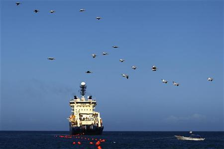 A ship lays fiber optic cable which will connect Venezuela and Cuba in a beach in La Guaira, in the state of Vargas outside Caracas January 22, 2011. REUTERS/Jorge Silva
