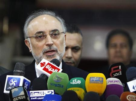 Iranian Foreign Minister Ali Akbar Salehi speaks during a news conference following his meeting with Sheikh Ahmed Mohamed el-Tayeb, Egyptian Imam of al-Azhar Mosque, in Cairo January 10, 2013. REUTERS/Mohamed Abd El Ghany
