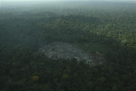 An aerial photograph shows an opening cut in the Amazon rainforest by loggers and farmers, in the Cachoeira Seca Indigenous Territory in Para State of northeastern Brazil, November 21, 2012. REUTERS/Juan Doblas/ISA/Handout