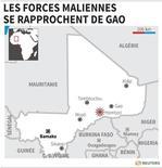 LES FORCES MALIENNES SE RAPPROCHENT DE GAO