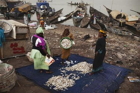 Women sort fish caught in the Timbuktu region at a port in Mopti January 31, 2013. REUTERS/Joe Penney (MALI - Tags: FOOD BUSINESS SOCIETY)