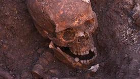 Череп короля Ричарда III в раскопанной британскими археологами яме в Лестере 4 февраля 2013 года. Британские археологи подтвердили, что найденный под автостоянкой скелет принадлежит королю Ричарду III, последнему представителю династии Йорков на английском престоле, убитому в битве при Босворте в 1485 году. REUTERS/University of Leicester/Handout