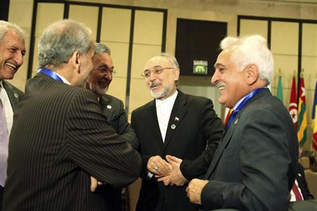 Iran's Foreign Minister Ali Akbar Salehi (2nd R) talks with other attendees before the start of the Organisation of Islamic Cooperation (OIC) summit in Cairo February 6, 2013. REUTERS/Asmaa Waguih