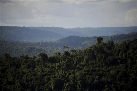 An overview of the Carajas National Forest in the Amazon Basin, where Brazil's Companhia Vale do Rio Doce operates the world's largest iron ore mine Ferro Carajas, and is awaiting a preliminary environmental license to start an even larger one, named Serra Sul, in Para State, May 29, 2012. REUTERS/Lunae Parracho