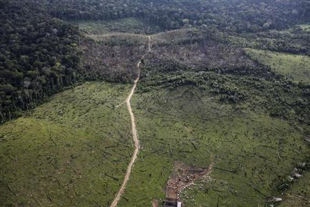 An aerial view shows illegal deforestation close to the Amazonia National Park in Itaituba, state of Para, May 25, 2012. REUTERS/Nacho Doce/Files