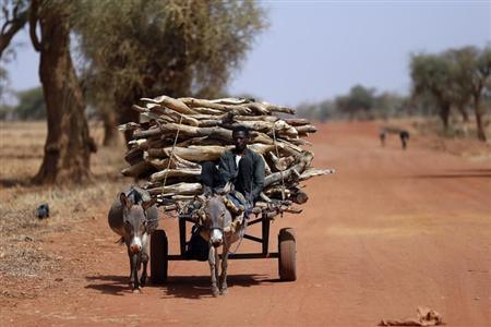 A Malian transports wood with a donkey cart on the road between Timbuktu and Douentza February 4, 2013. REUTERS/Benoit Tessier