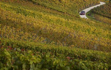 A car drives along a road through the vineyards on a warm autumn day near Tartegnin October 22, 2012. REUTERS/Denis Balibouse/Files