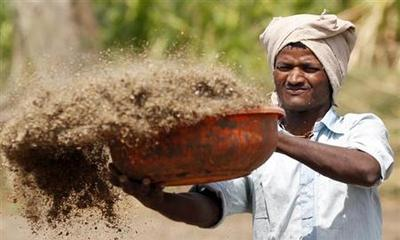 Government to cut fertiliser subsidy for FY14