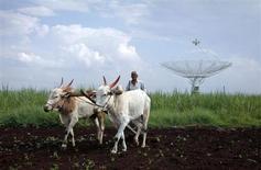 Фермер пашет землю на буйволах на фоне спутниковой тарелки рядом с городом Нарайангаон, Индия 28 сентября 2012 года. Индия, один из ключевых рынков для белорусских и российских производителей калия, вновь планирует сократить субсидии фермерам на покупку калийных удобрений как минимум на 15 процентов в 2013-2014 налоговом году, что чревато снижением спроса на импорт. REUTERS/Vivek Prakash