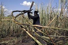 trabalhador corta plantas de cana-de-açúcar nesta foto de arquivo em plantação em Pradópolis, São Paulo. A capacidade de moagem de cana do Brasil, maior produtor global de açúcar, poderá se esgotar em duas safras se os investimentos em aumento da capacidade industrial não acompanharem a expansão da colheita, prevista para ser recorde já neste ano, alertaram especialistas à Reuters. 06/07/2007 REUTERS/Rickey Rogers/Files